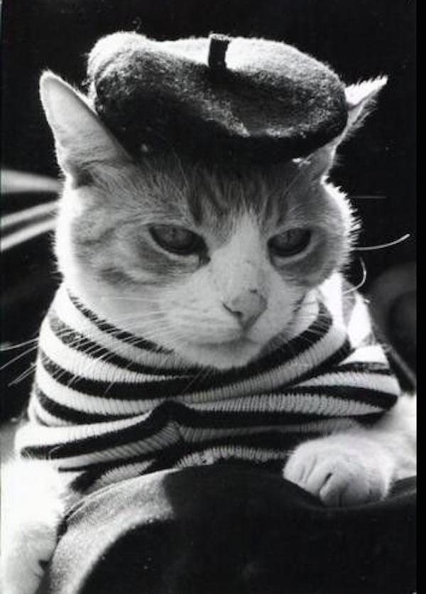 chat frances