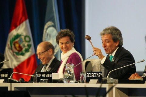 Peru's environment minister, Manuel Pulgar-Vidal, wielded the gavel at the end of talks on a new international climate agreement in Lima on Sunday. (Credit: IISD.ca) Click to Enlarge.
