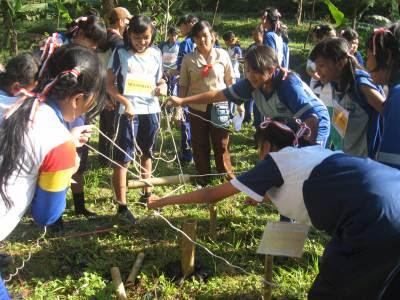 Educational Games: Evacuation Bamboo