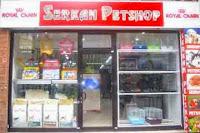 İş Fikirleri Pet Shop Açmak İçin Gerekli Belgeler