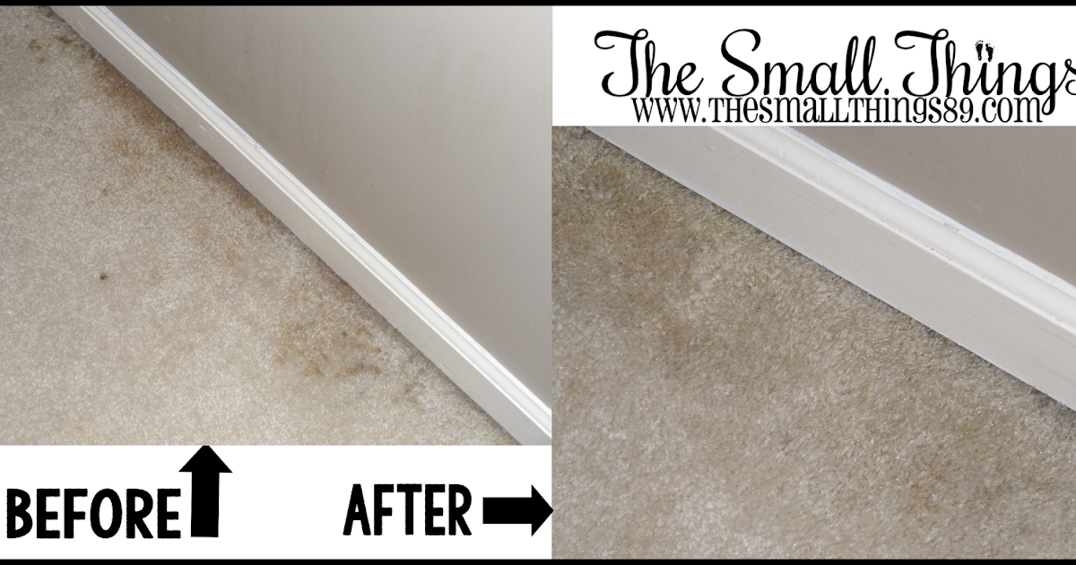Tackle Carpet Stains With Genesis 950 Concentrate Cleaner