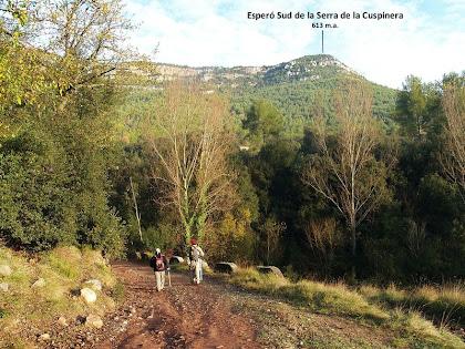 L'esperó sud de la Serra de la Cuspinera des de sota la font de Ca n'Oliveres