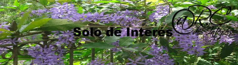 SOLO DE INTERES