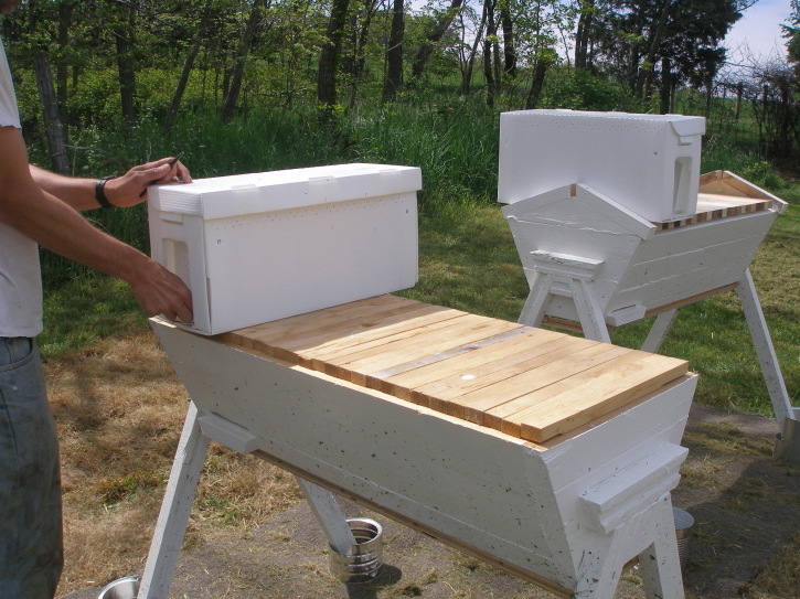 Charmant ... On Top Of Our Hives For A Few Days To Allow Them To Recover From Their  Car Trip (bees Are Sensitive To Vibrations  Their Car Ride Was Only 10  Minutes ...