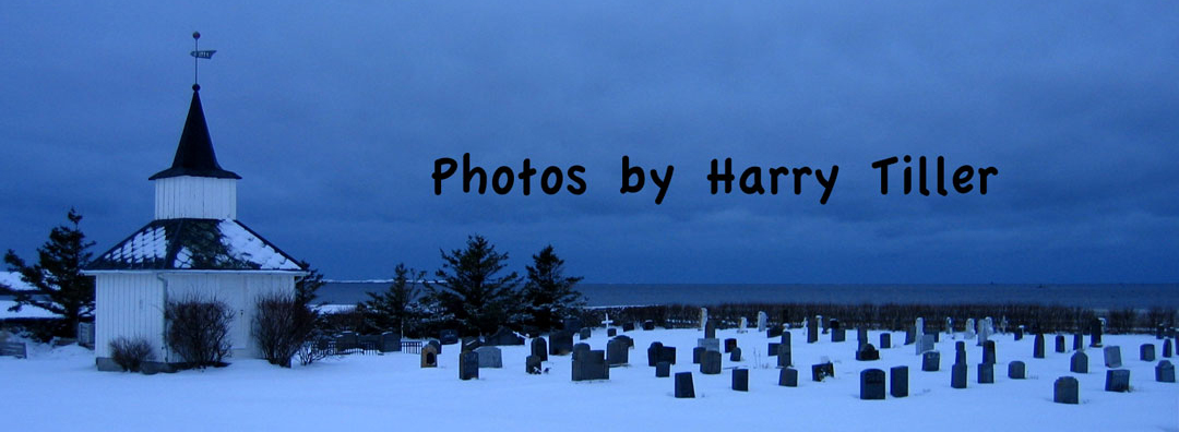 Harry Tillers fotoblogg