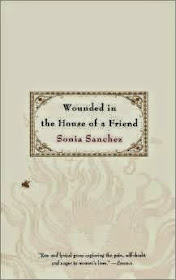 Wounded in the House of a Friend by Sonai Sanchez