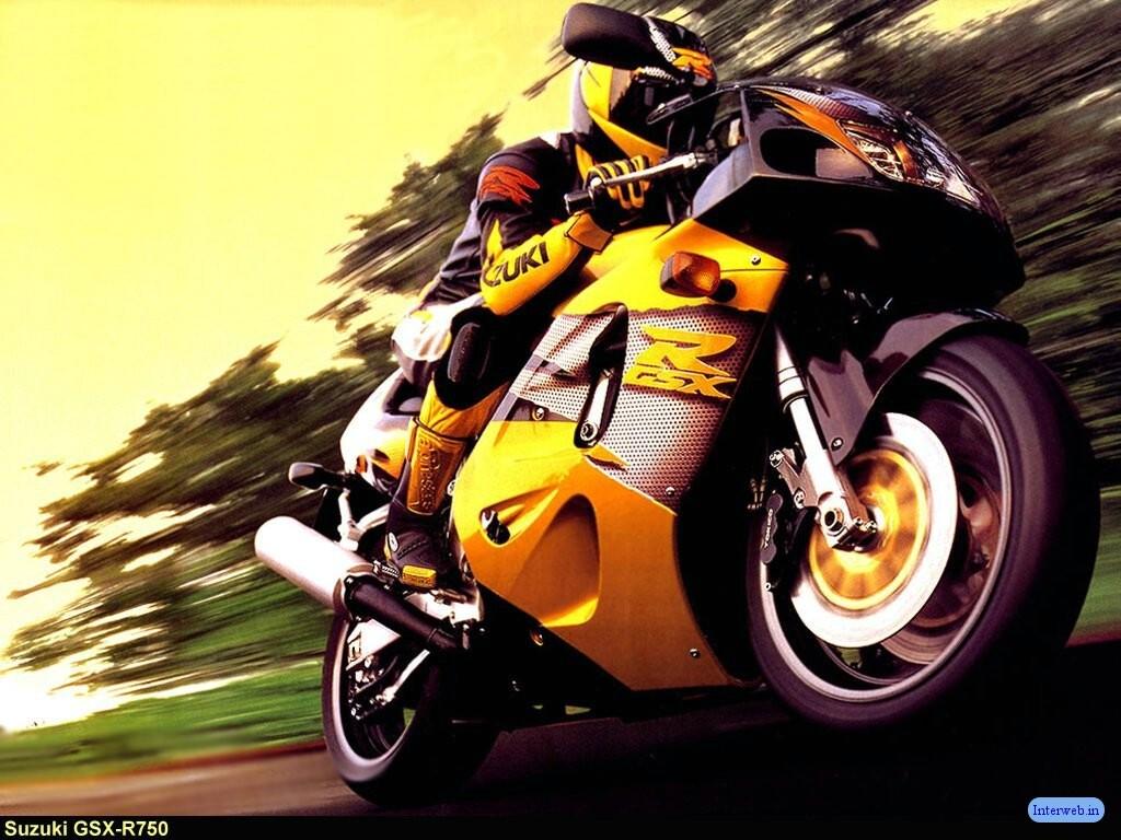 Suzuki GSXR bike and rider body kit