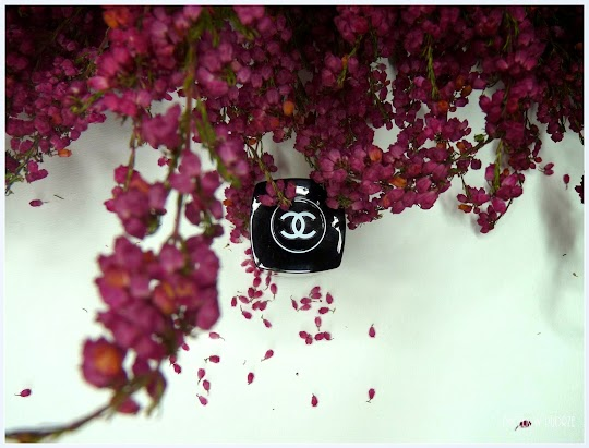 Chanel Le Vernis 333 Madness