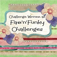 Fab n Funky Challenge winner!