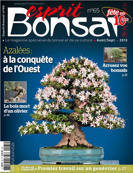 http://www.esprit-bonsai.fr/