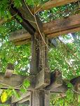 Alpendre do parque de merendas