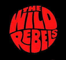 Wild Rebels Skateboarding