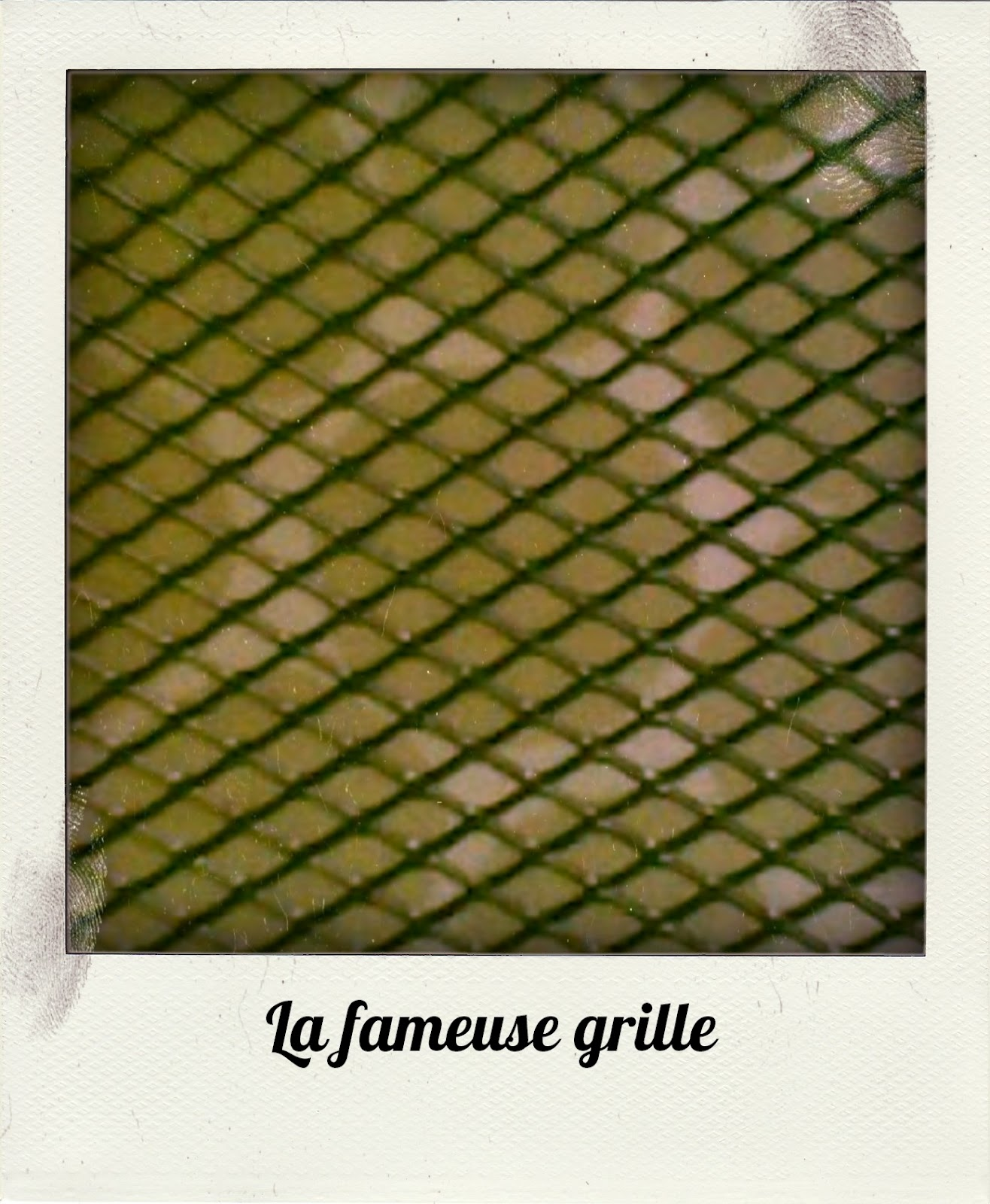 Grille De Soupirail De Cave les nippes de dothy bee: le cadre porte boucles d'oreilles de titi