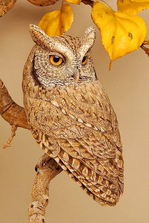 My owl barn amazing wood carving by lona hymas smith