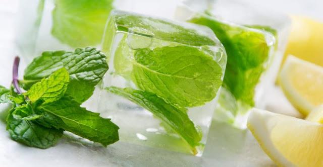 Manfaat ganda dari balok es berisi daun mint
