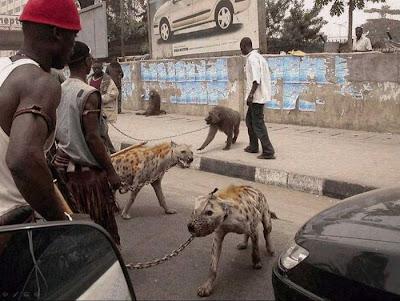 فقط في أفريقيا - الجزء الثاني-منتهى