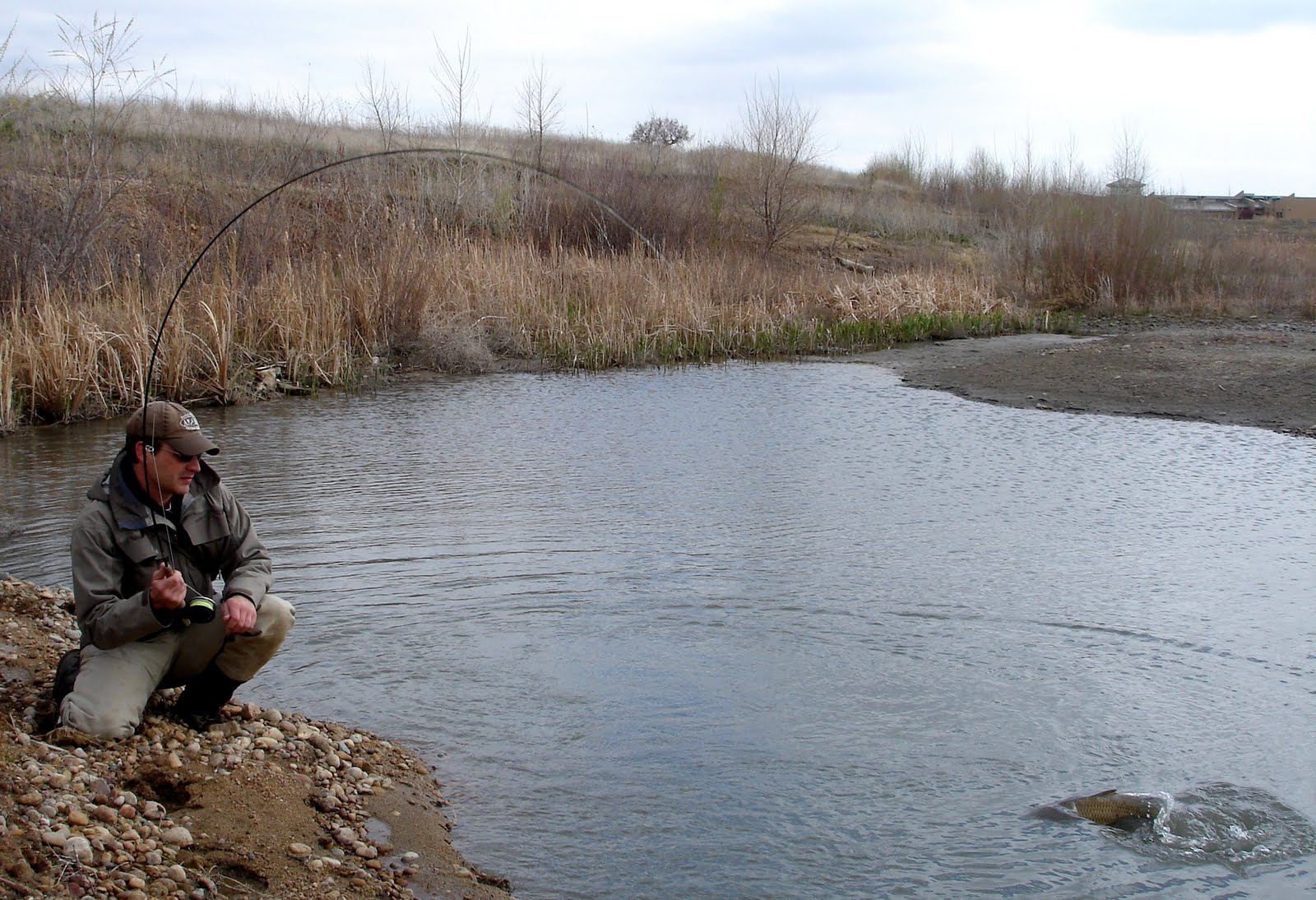 Colorado fly fishing reports april 2011 for Colorado fly fishing reports