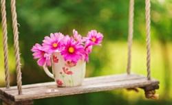 Láskavé slová môžu byť krátke a ľahko vysloviteľné, ale ich ozveny sú nekonečné.  (Matka Tereza)