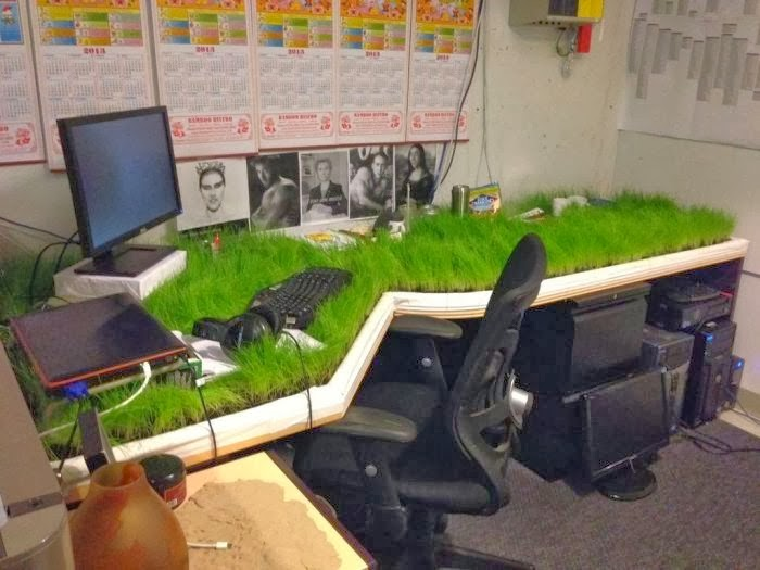 Graceful Green Workplace in Pictures