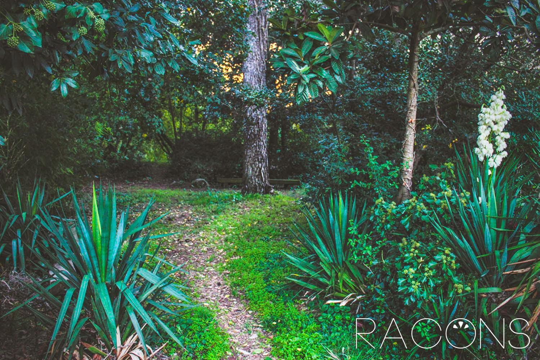 Natura de Girona els jardins de la jueva