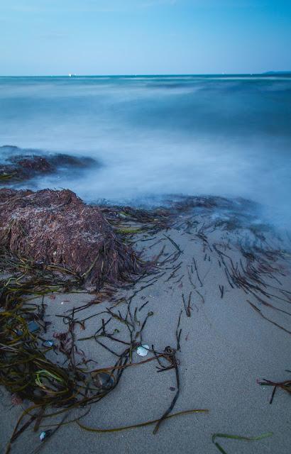 Muscheln mit Strand und Meer in der Lübecker Bucht Landschaftsfotografie Andreas Blauth