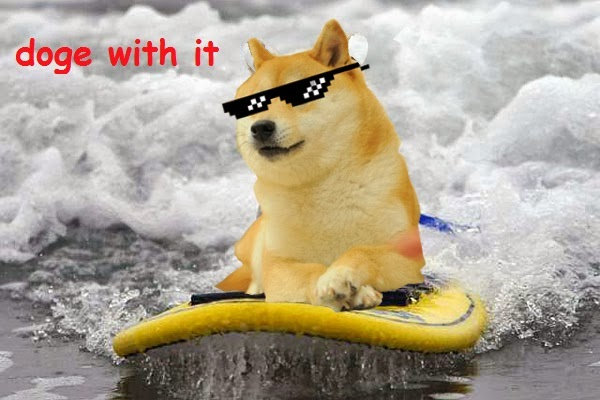 Jimmyfungus the best of doge the absolute best of the shibe deal with it doge here ya go the only tangible contribution i have made to this meme as i was the one who wrote doge with it on this solutioingenieria Images