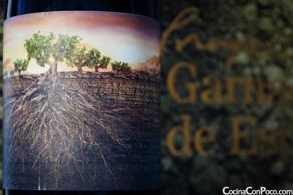 Proyecto Garnachas de España - Vintae - Cocina Con Poco