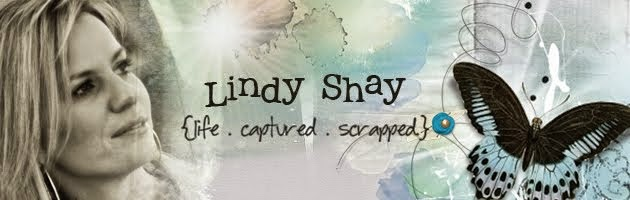 Lindy Shay