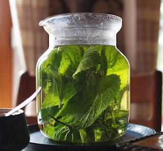 Pemon Balm Tea