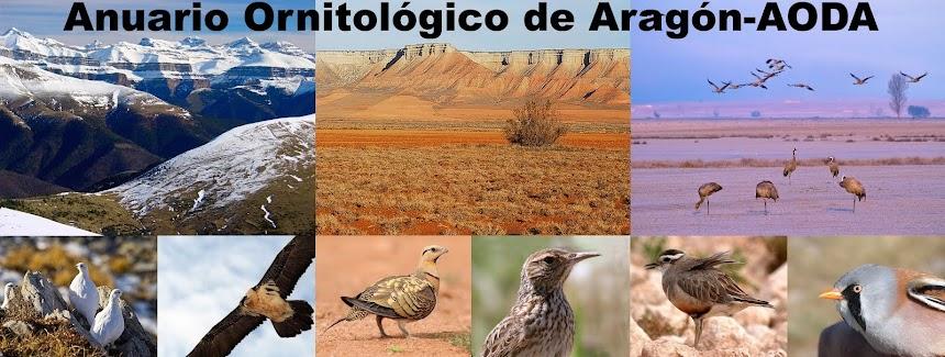 Anuario Ornitológico de Aragón-AODA