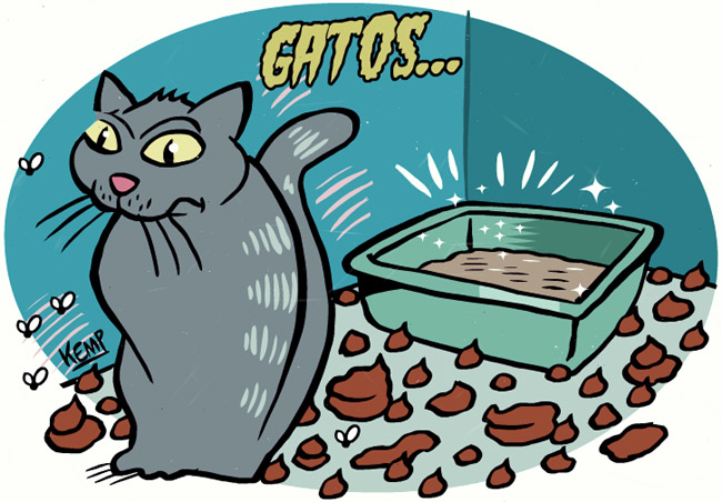 http://4.bp.blogspot.com/-cq0Dtxd8oSo/UEfJpN1NGqI/AAAAAAAALts/r8H6P439c4Q/s1600/gatoscaixinhadeareiaset2012.jpg