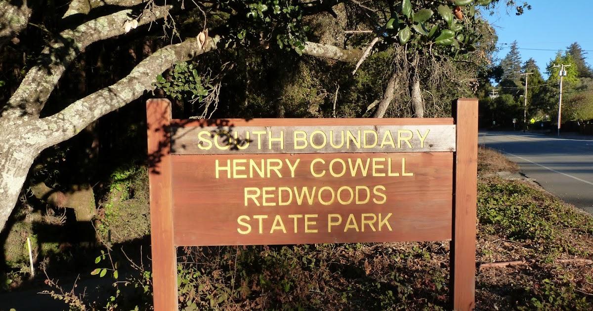 Boundary Bay Dog Park