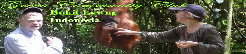 Amazing Bukit Lawang Adventure  l Green Community Club l  Idonesia