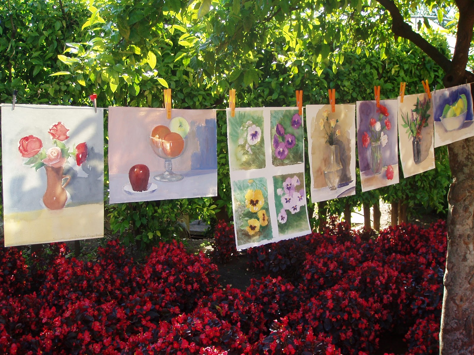 Escuela de arte antonio povedano los domingos al jard n for Jardin botanico cursos