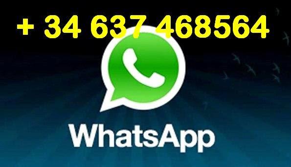 Contacto wassapp