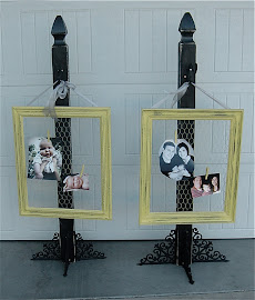 Chicken Wire Frames (SOLD)