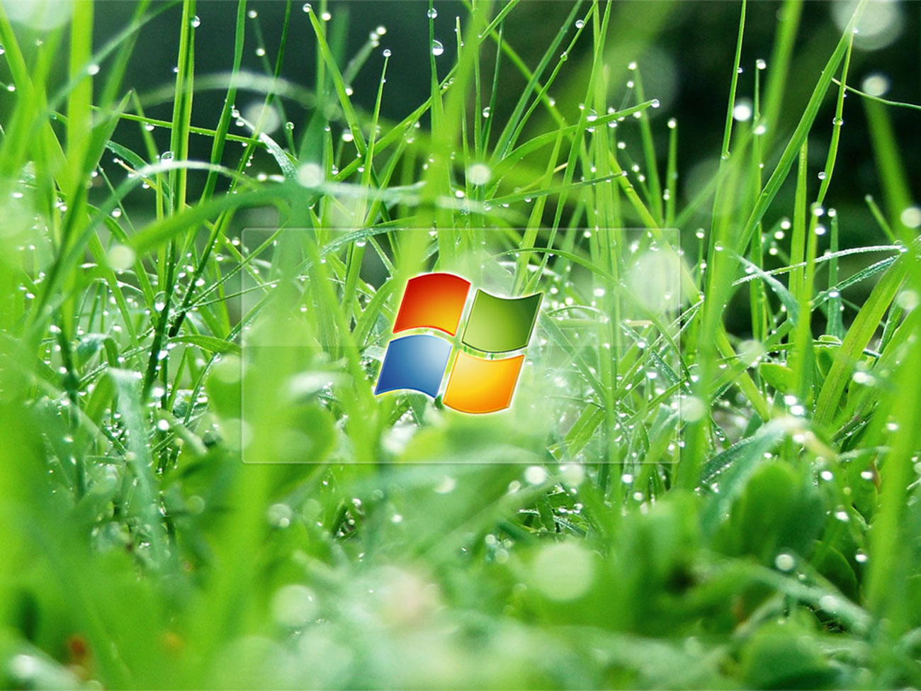Windows 8 Animated Desktop Wallpaper