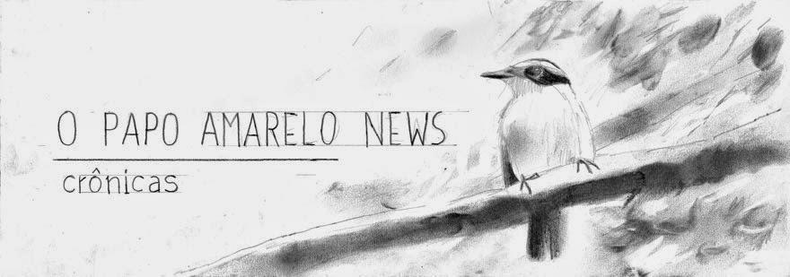 O Papo Amarelo News