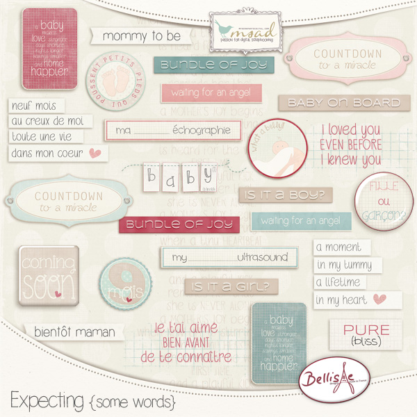 https://www.myscrapartdigital.com/shop/bellisae-designs-c-24_23/expecting-some-words-p-2863.html