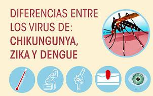 Conocé la diferencia entre el dengue, el zika y el chikungunya