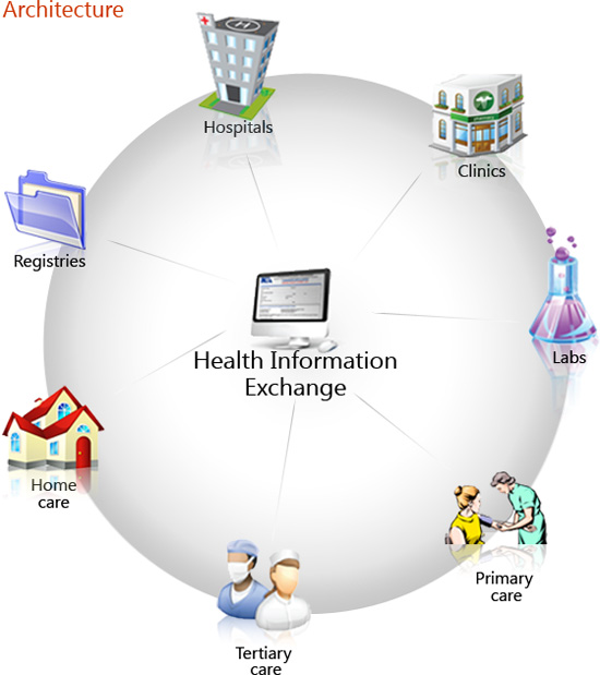 implementing a health care information system essay You are responsible to lead the project committee in implementing a health information system  health information  information system supports quality care.