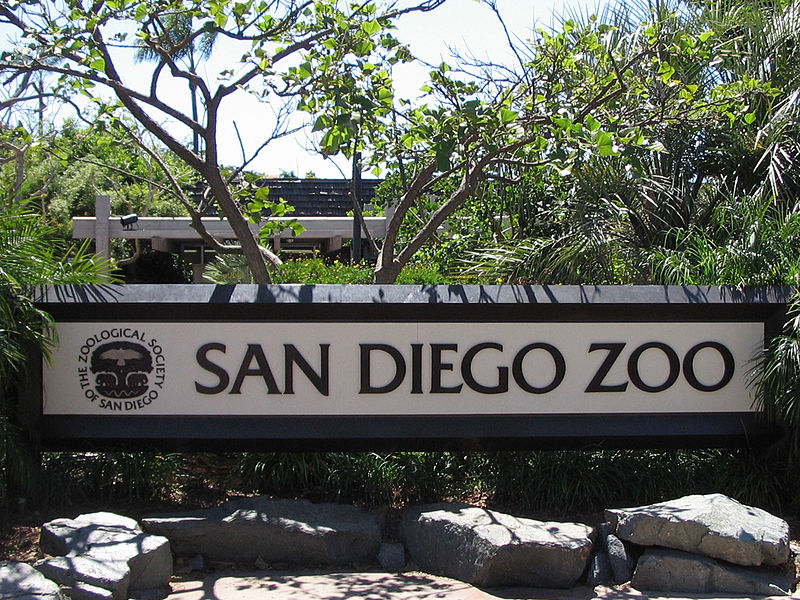 san diego zoo Get you discount tickets to the san diego zoo explore the world famous san diego zoo in lovely balboa park.