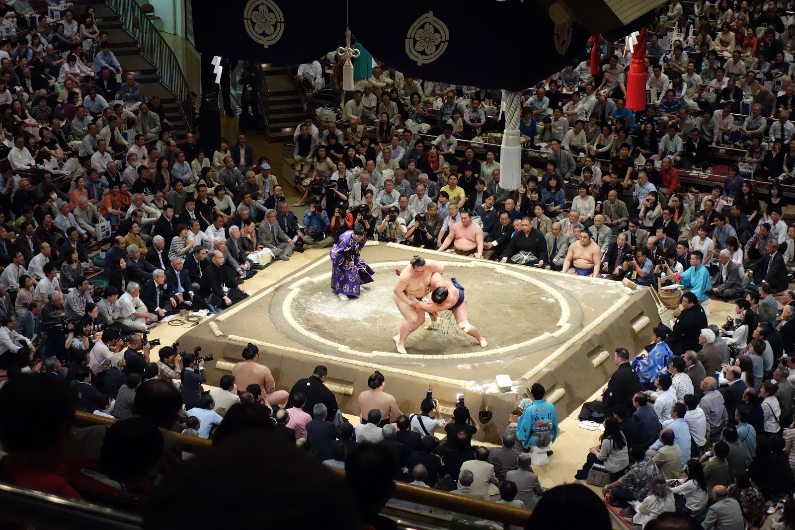 Our Exciting Sumo Tournament Experience! - Japan Guide