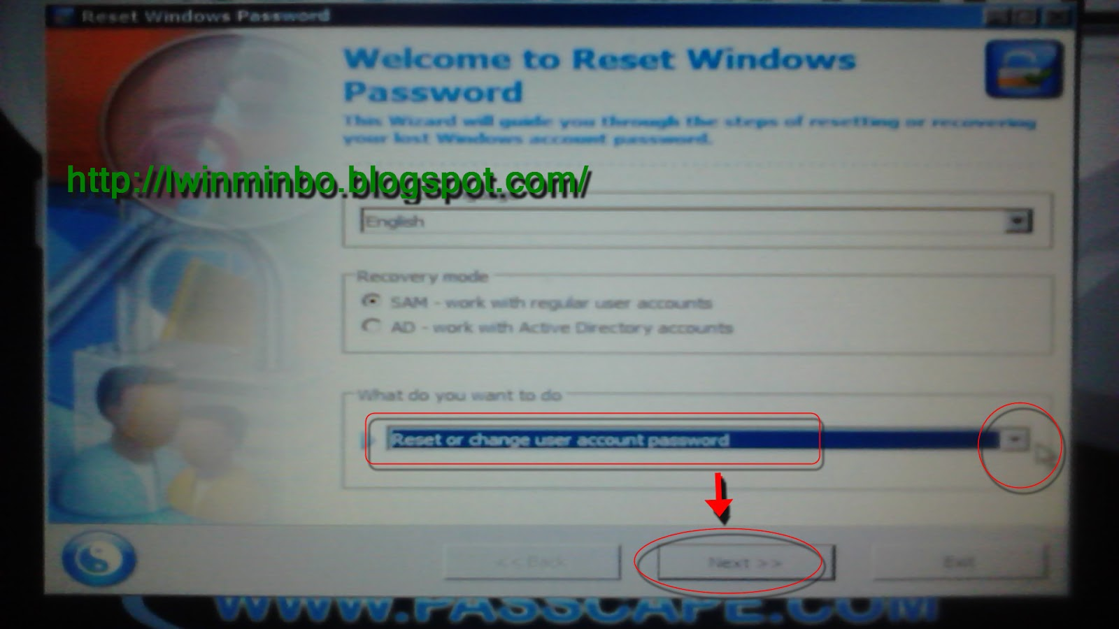 User password recovery windows