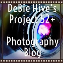 The Photo Blog