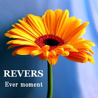 Revers - Ever moment