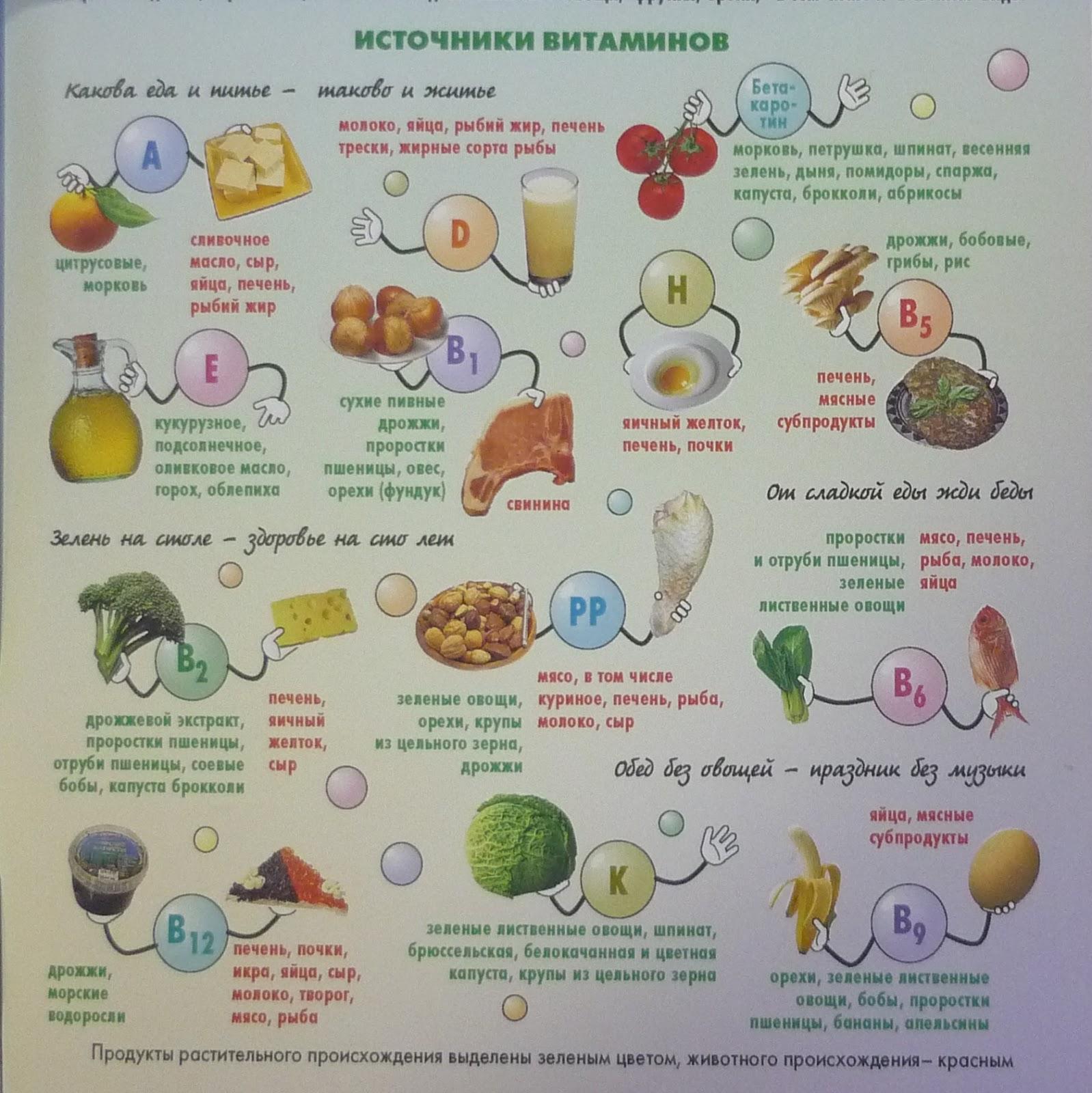 продукты способствующие сжиганию жиров организме