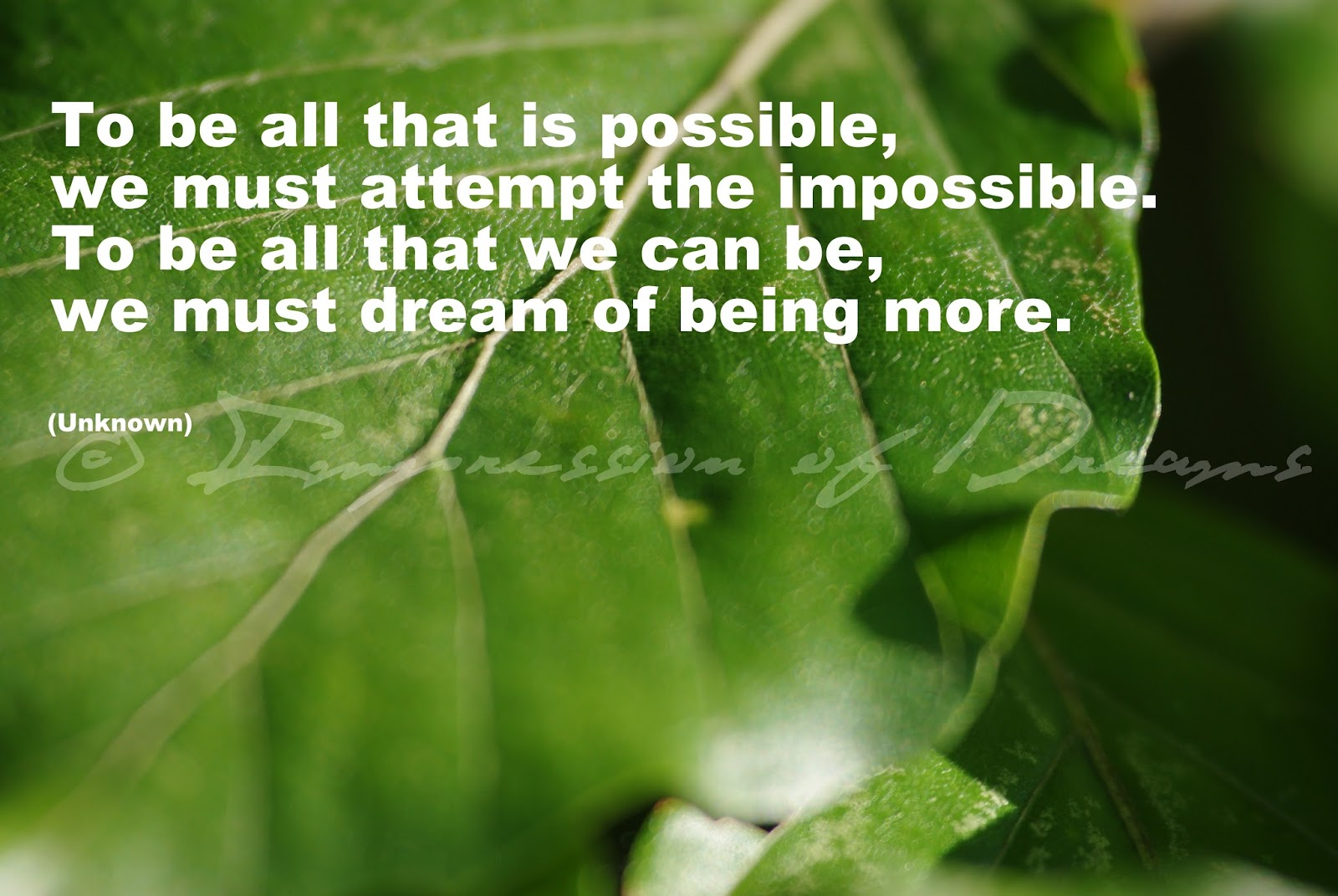To be all that is possible, we must attempt the impossible. To be all that we can be, we must dream of being more.