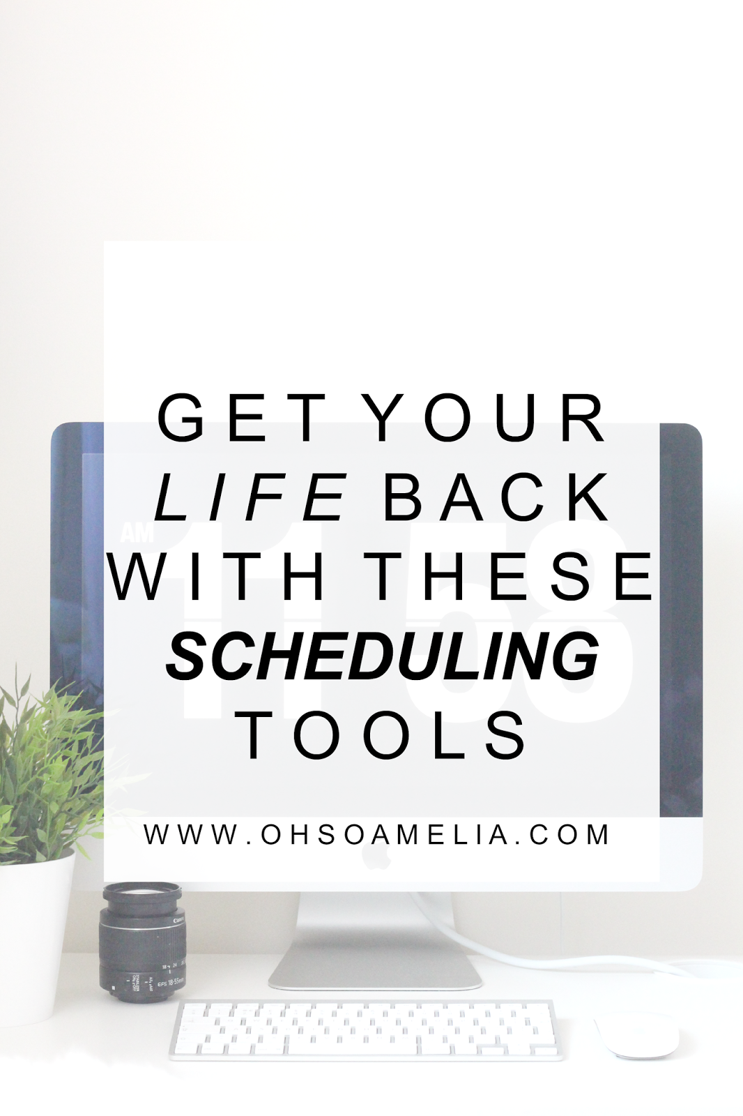 Schedule your blog posts via social media