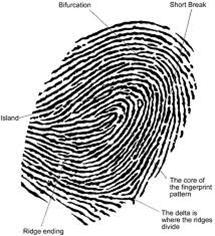 5 Macam Sistem Identifikasi Manusia [ www.BlogApaAja.com ]